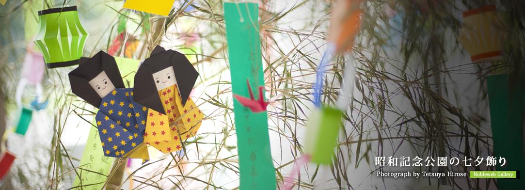 昭和記念公園の七夕飾り